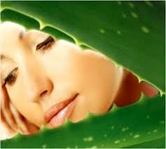 Effective Ways to Use Aloe Vera for Beautiful Skin